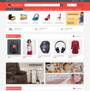custom ecommerce website development India